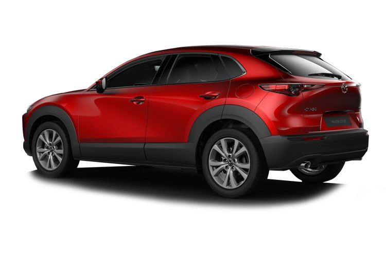 Mazda CX-30 SUV 2.0 e-SKYACTIV X MHEV 186PS GT Sport 5Dr Manual [Start Stop] back view
